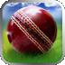 Cricket Worldcup Fever APK